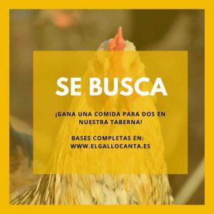SE-BUSCA-taberna-el-gallocanta